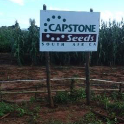Captone seed trails Mozambique